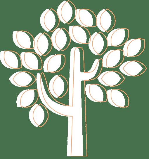 Árvore Baru Credito Online