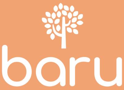 Logomarca Baru Credito Online